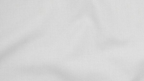 HTS 0021 - Two-Tone Oxford White