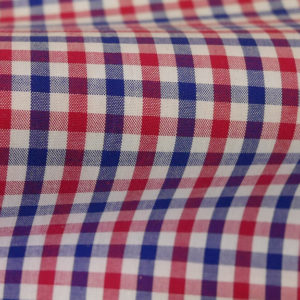 HTS 8410 - Small Gingham Red Blue