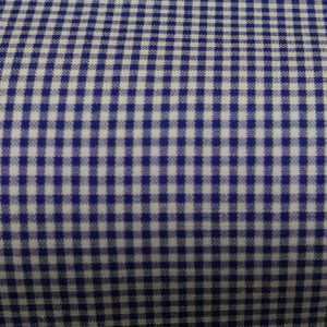 HTS 8440 - Micro Gingham French Blue